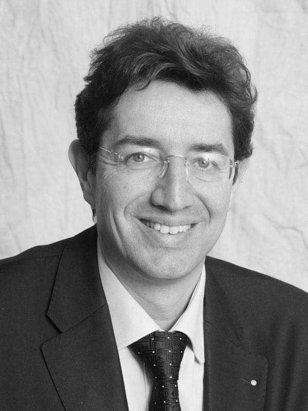 Prof. Dr. Paolo Ermanni